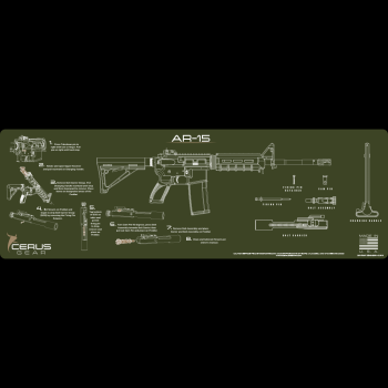 AR-15 INSTRUCTIONAL RIFLE